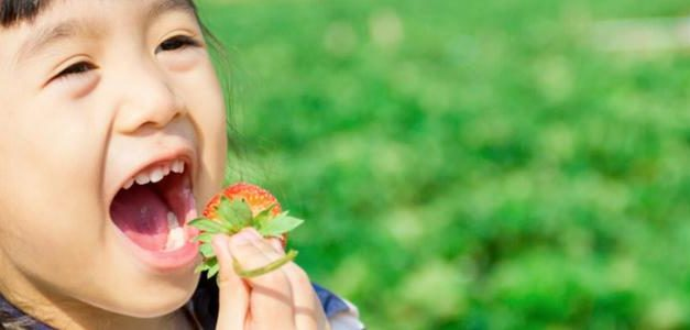 Why You Should Teach Your Children About Food Allergies